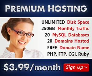Premium Hosting