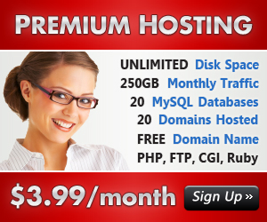 Premium Hosting